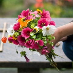 Flowers Coupon Codes